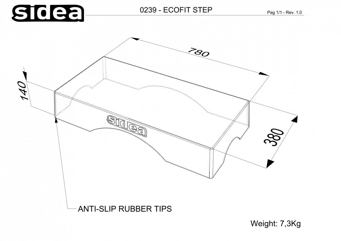 0239 step