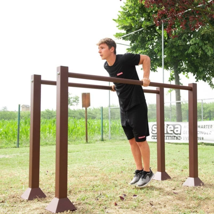 public-island-parallel-parallels-dips-bar-bars-gymnastic-triceps-outdoor-training-public-area-park-beach-workout-